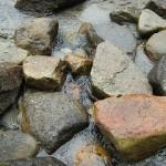 functie van bronwater